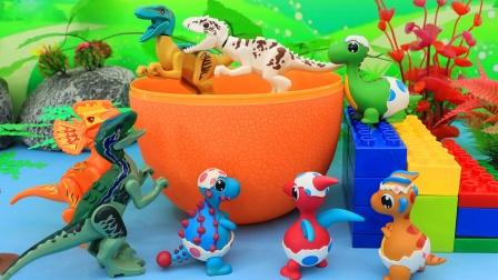 巨型恐龙蛋里的有恐龙玩具