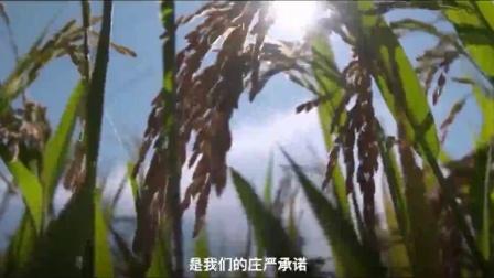 微视频丨庄严承诺