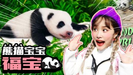 好可爱的熊猫宝宝呀!基尼探访爱宝乐园与福宝见面