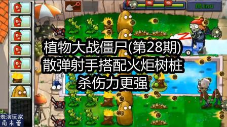 植物大战僵尸,游泳池模式第10关,三线射手和火炬配合使用