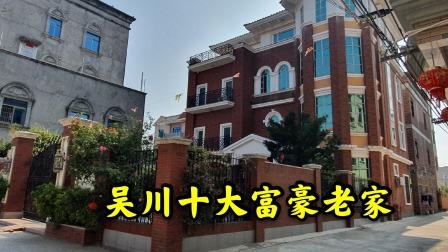实拍湛江鼎盛集团老板陈观武的家乡,户户住三层大洋房,太有钱了