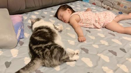 小主人睡觉猫咪静静陪伴,对比过才发现,喵星人对小孩那么温柔