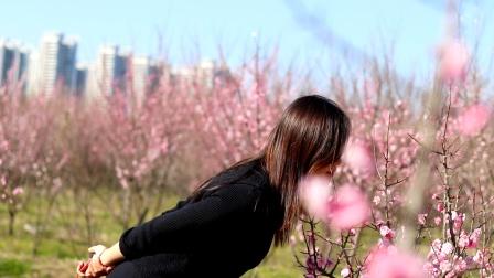 一首《春暖花开》太美了,送给朋友们!