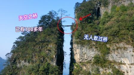 贵州大山悬崖上一座木桥,看着好险无人敢过,这么高如何建的?