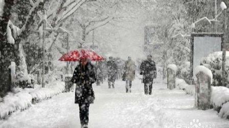 山东要下雪了!今明雨雪大风来袭 气温跳水