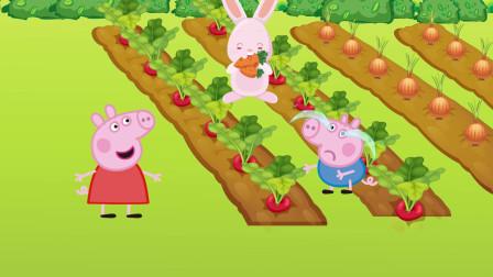 小兔子偷吃了佩奇种的胡萝卜