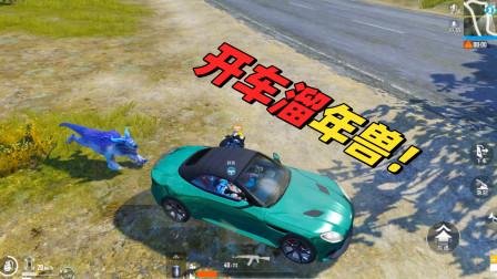 开车带年兽进去决赛圈,敌人看到后不知道该打哪个了!