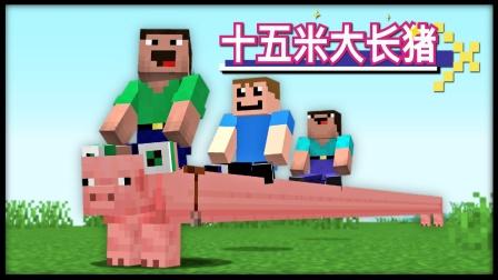 我的世界:骑着十五米的大长猪,喂它十五米长的胡萝卜!