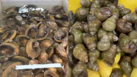 三月螺蛳四月蚌!元宵节未过已上市,杭州吃货有口福了