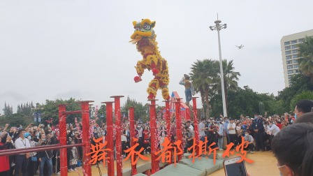 湛江醒狮世界有名,实拍舞狮高桩上飞舞,果真名不虚传就像活狮子