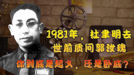1981年,杜聿明去世前质问郭汝瑰:你到底是起义,还是卧底?