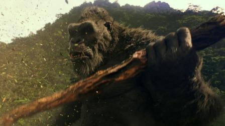 电影《哥斯拉大战金刚》定档3月26日,世纪对决即将开战!