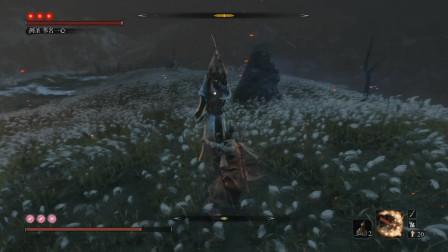 只狼 影逝二度 大帝解说 第31期 鬼庭主马雅次 巴流苇名弦一郎 剑圣苇名一心