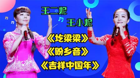 王二妮唱《圪梁梁》《盼乡音》《吉祥中国年》,带着妹妹上台,强
