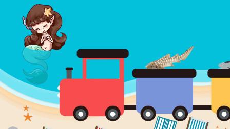 趣味识动物:小美人鱼开着小火车去接了哪些海洋动物回来呢?