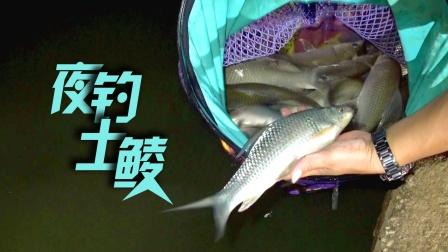 《游钓中国7》第5集 沙井水库夜钓土鲮
