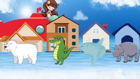 趣味识动物:快来和小美人鱼一起坐着潜水艇去探望小动物们吧!
