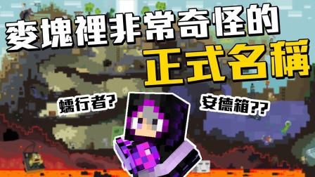 我的世界里你没听过的『正式』中文名称! ! ! 蠕行者安德箱不要闹了好不! ! !