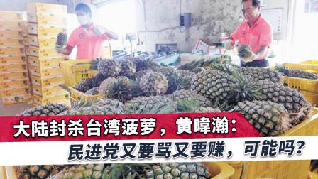 台湾菠萝被禁,黄暐瀚:两岸如此交恶,爽赚大陆钱这个梦早该停了
