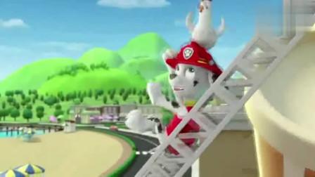 汪汪队立大功:咕咕鸡坐车跑走了,并混到了鸡笼里,好多咕咕鸡啊