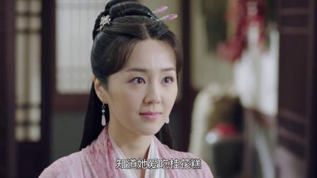 锦衣之下:林菱询问杨岳,怀疑今夏,真的是她姐姐的女儿