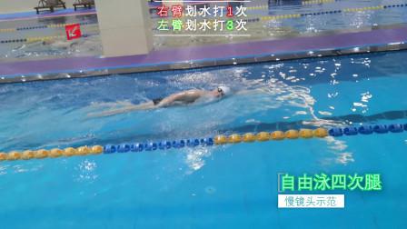 中游体育:慢镜头示范自由泳四次腿技术动作节奏