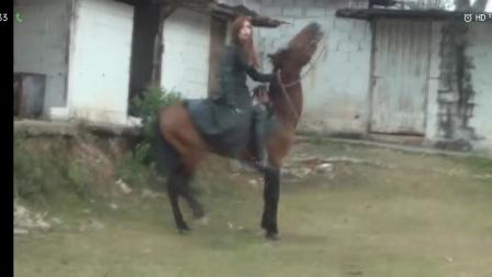 美女狠骑马