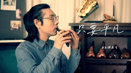 《只要平凡》在平凡的人生中,认清遗憾珍惜真情 解亚飞陶笛演奏