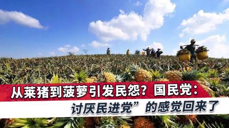 菠萝事件后台湾民意反弹,国民党:必须也应该要加倍奉还给蔡英文