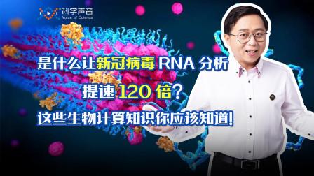 是什么让新冠病毒RNA分析提速120倍?这些生物计算知识你应该知道