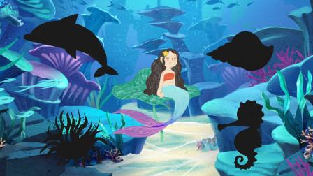 趣味识动物:美人鱼要介绍哪些小动物给我们认识呢?认识海豚等