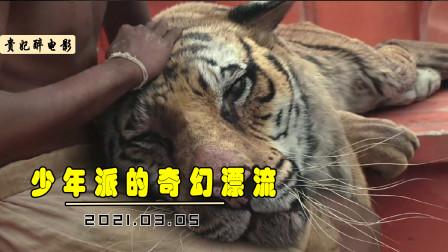 少年与老虎在海上漂流227天,为了活下去,每天都要给老虎抓鱼吃!