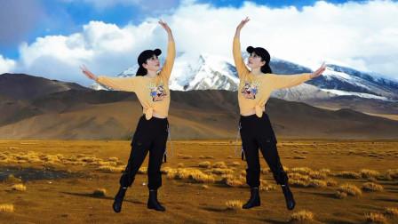 玖月广场舞:可可托海牧羊人  快版 动作分解