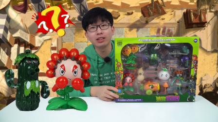 乐玩哥哥又发现新植物,大家知道它叫什么名字吗
