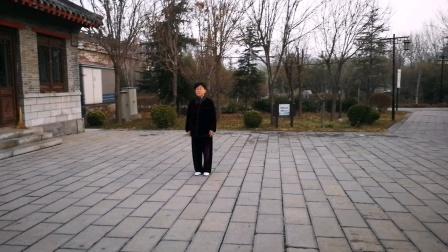 武当太极拳十三式学习中