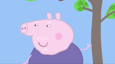 小猪佩奇:苹果掉了下来,猪爷爷幸运了,正好砸在他的头上!