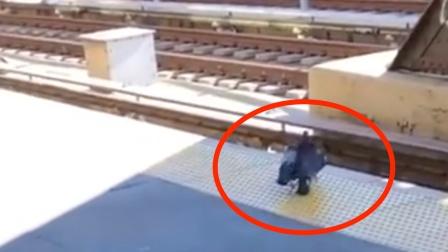 纽约一只鸽子被同伴逼下铁轨 网友:原来鸽子也有江湖