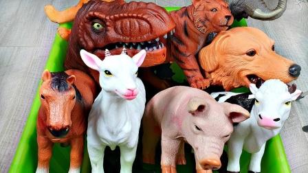 农场动物和恐龙玩具展示