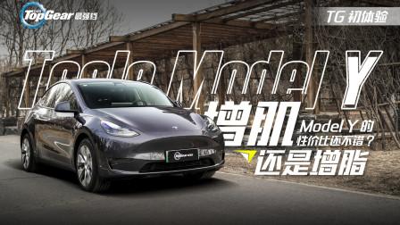 Model Y究竟是一台怎样的特斯拉?
