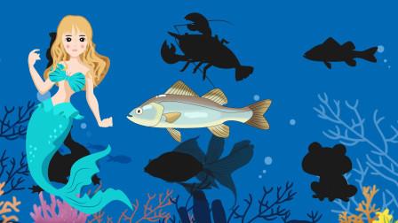 趣味识动物:这个影子会是哪只小动物的呢?快和美人鱼一起猜猜看