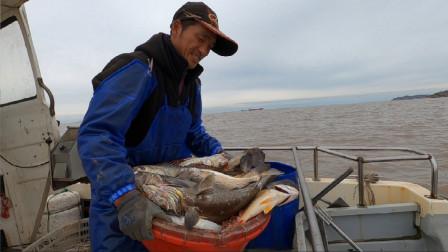 阿杰赶海又大丰收了,值钱海货狂拉几十斤,舟山渔场真的名不虚传