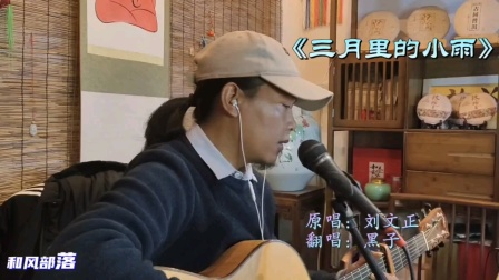 吉他弹唱《三月里的小雨》