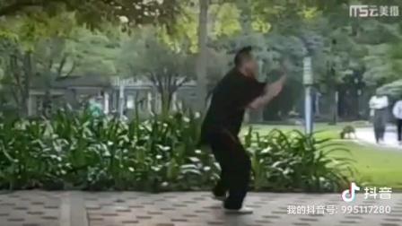 龍形拳套路『擸五形』