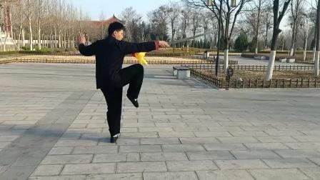傅传杨式太极刀