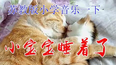 苏教版小学音乐一年级下册《小宝宝睡着了》