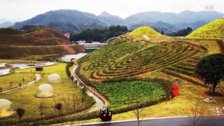 """""""湖南三天愉快之旅"""" 视频是参观华莱三天游玩中随拍的,愿有更多的人前往了解华莱,理解喝黑茶的价值所在💃"""