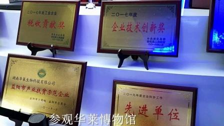 湖南安化三天愉快之旅:参观华莱博物馆随拍