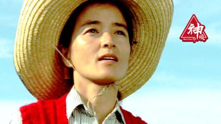 豆瓣8.7分,41年看哭了11万观众的日本经典电影!
