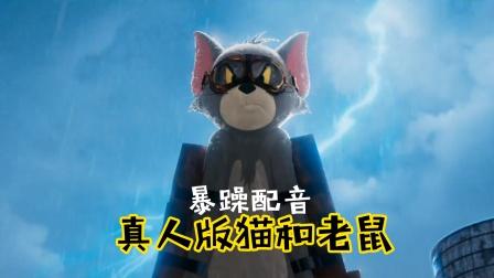 给真人版猫和老鼠配上四川话,笑得肚儿痛!