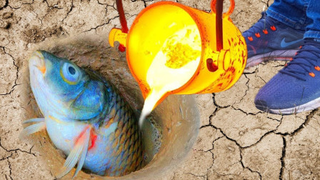 高温岩浆能否将鱼烤熟吗?老外实测,下一秒口水直流!